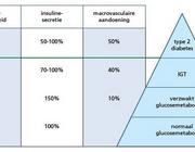 Interdisciplinaire diabeteszorg met behulp van DiabetesNed