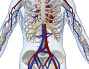 Het gebruik van idarucizumab bij een gastro-intestinale bloeding