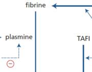 Ontwikkeling en toepassingen van trombolyse